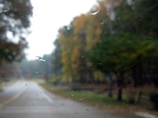 Fall 031 edit