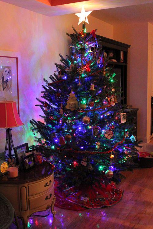 Vera's B'day thru Christmas 099