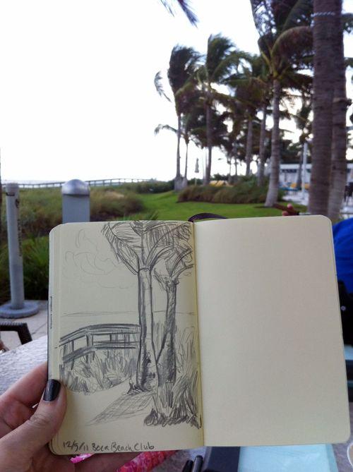 Palm tree scene
