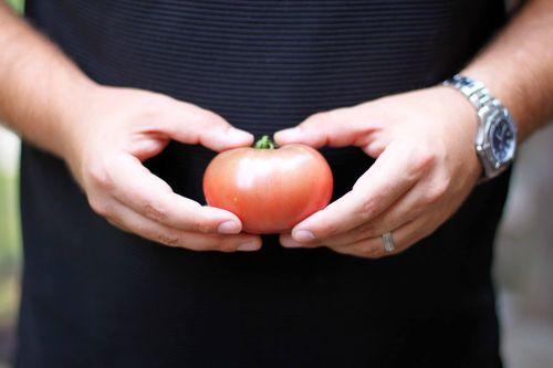 Second tomato 007