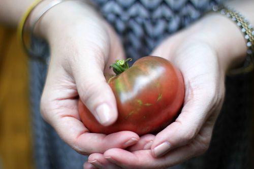 Second tomato 015