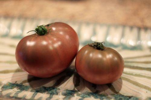 Second tomato 016