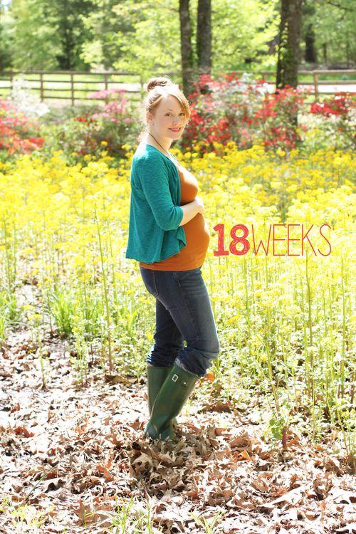 18 weeks 2