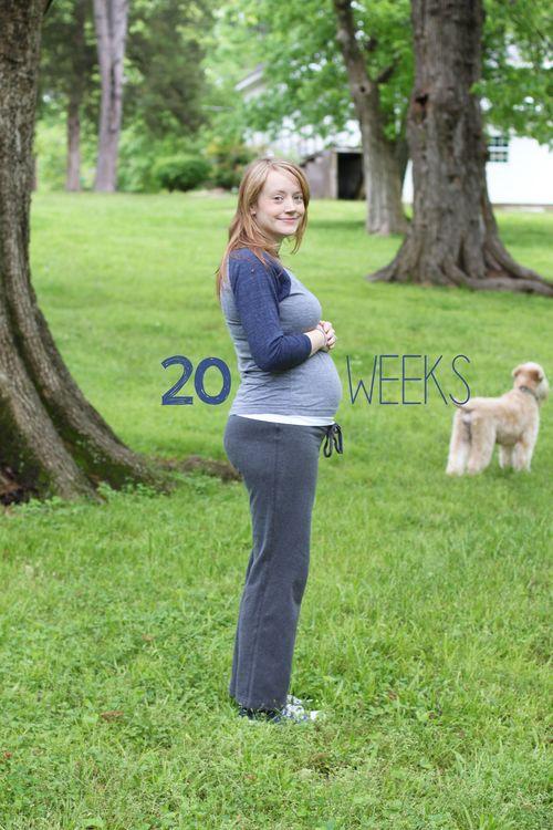 20 weeks 2