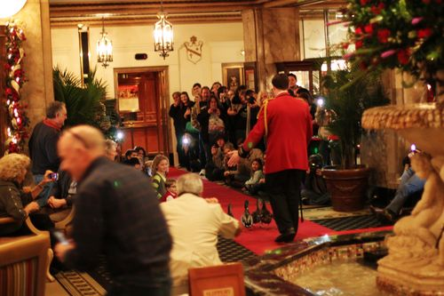 Peabody Christmas 2013 008
